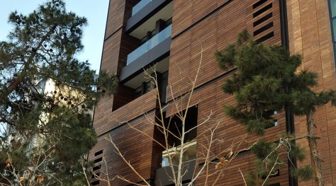 Shahin Office Building / Line Architecture Office