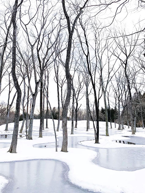 Art Biotop Water Garden, Japan / Junya Ishigami